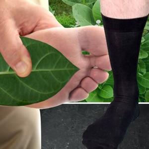AAK Leaves to Treat Diabetes and Obesity | Orange Health