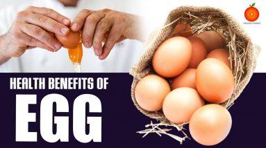 Egg Nutrition Facts - Health Benefits of Egg || Orange Health